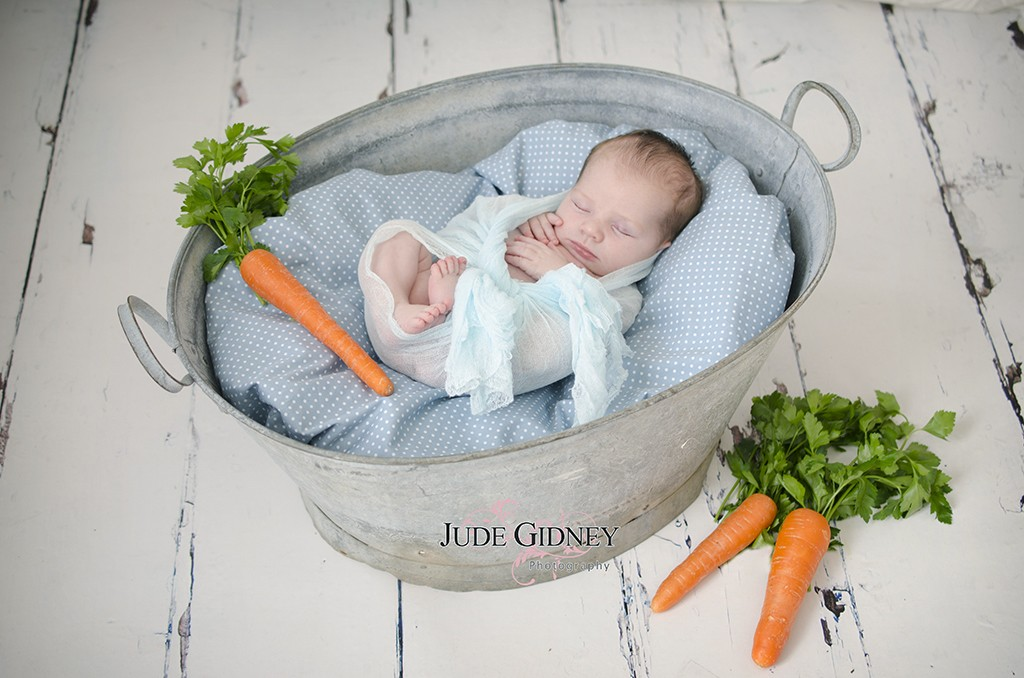 newborn baby photo peter rabbit